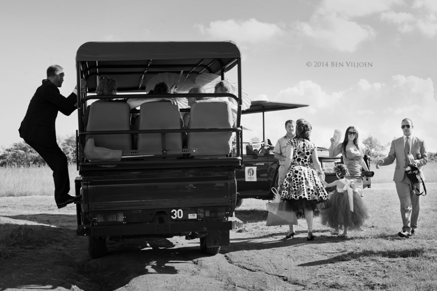 wedding guests, wedding guests game vehicle, getting on the car, mabula lodge weddings