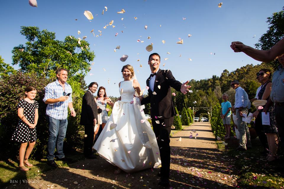 confetti plettenberg bay