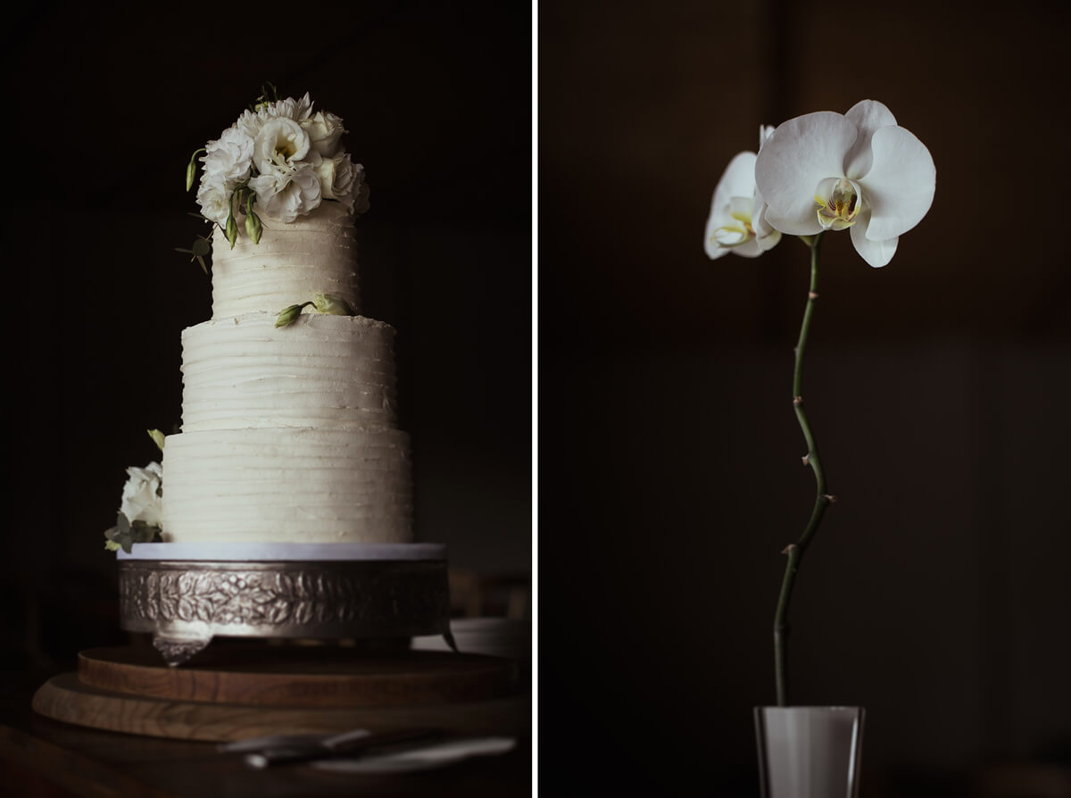 wedding cake orchid
