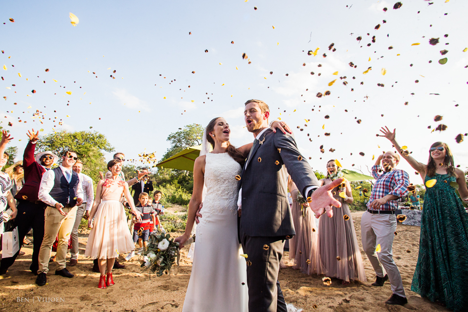 bushwillow seeds confetti